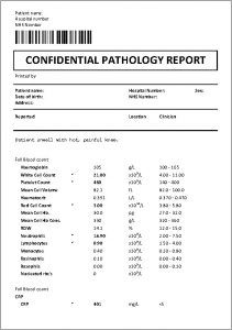 Example clinical pathology report of suspected bacterial infection